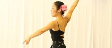 Pirouette Workshop