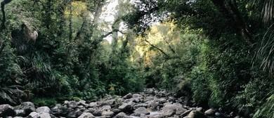 Patuha Rainforest Retreat
