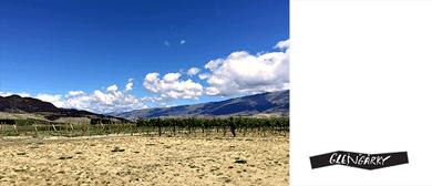 Khyber Pass Wine Club - Quartz Reef