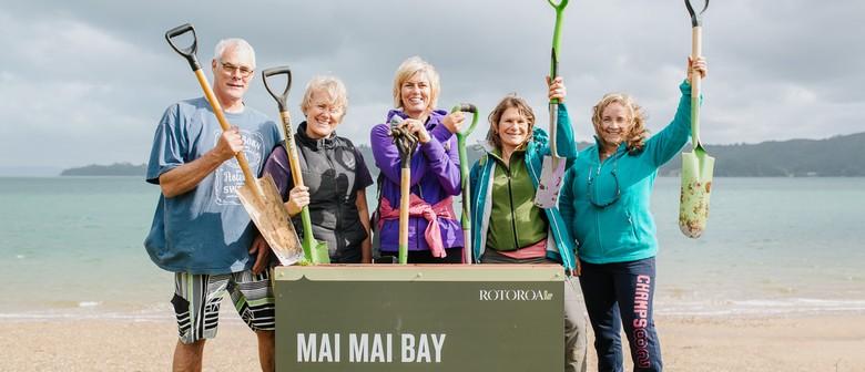 Volunteers: Help Restore Rotoroa Island & Save A Rare Plant