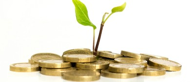 Investment Options to Consider In the Current Economy