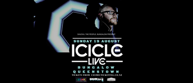 Icicle & Local DJ Support