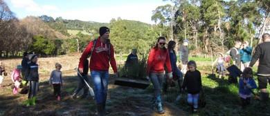 Matuku Link Volunteer Day