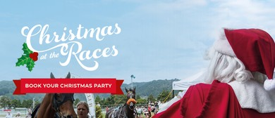 Wellington Christmas At the Races