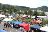 Image for event: Picton Maritime Festival Trust