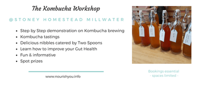 Kombucha Workshop and Gut Health