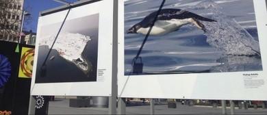 30th Anniversary COMNAP Exhibition