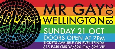 Mr Gay Wellington