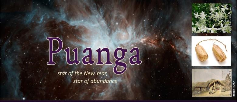 Puanga - Star of The New Year, Star of Abundance