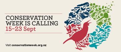 Zealandia Perimeter Fence Conservation