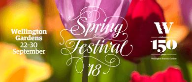 Spring Festival Walk - The Joys of Spring