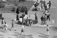 Image for event: Scene On the Street: Hamilton's CBD 1900 - 2000
