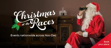 Pukekura Raceway Twilight Christmas At the Races