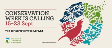 Kaikoura - Predator Trapping Workshop