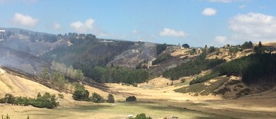 Climate Change, Dryland Farming and The Port Hills Fire