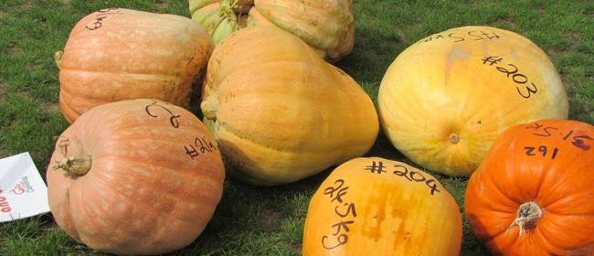 The Great Pumpkin Carnival