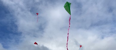 Out and About Kite Day