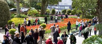 Seniors Week - Guided Walk through Wellington Botanic Garden