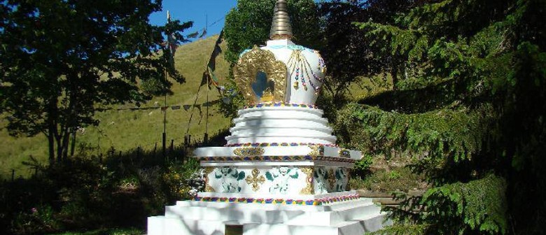 Beginners Buddhism 8 Week Course