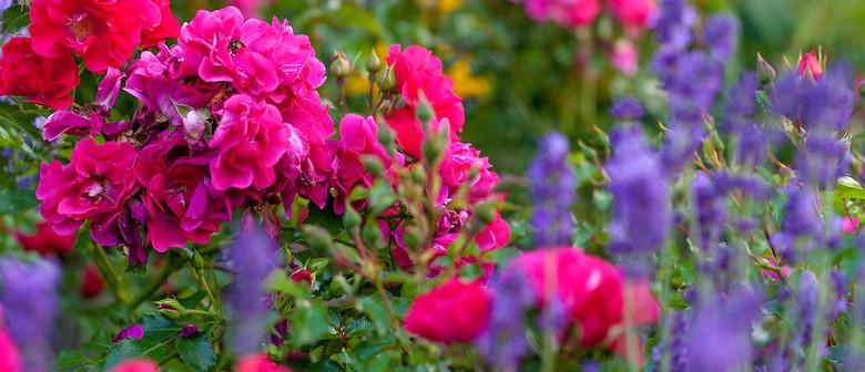 Roses and Lavender High Tea Workshop