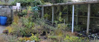 Otari-Wilton's Bush and VUW Nursery Concept Exhibition
