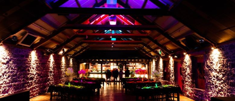 Antara - Cocktail Party Fundraiser