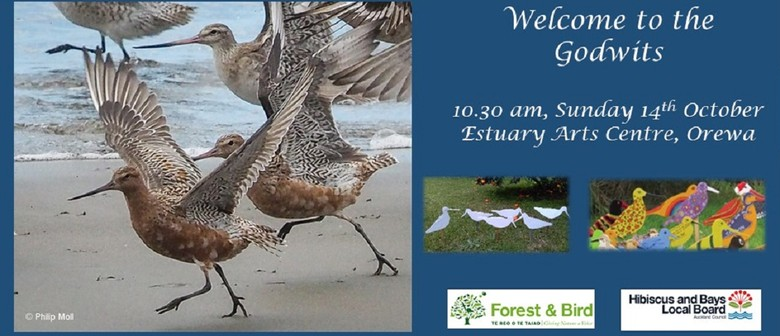 Welcome to The Godwits