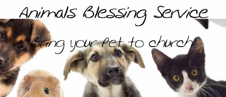 Animals Blessing Servive