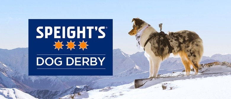 Speights Coronet Peak Dog Derby