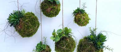 Kokedama Workshops and Take Home 2 of These Hanging Gardens