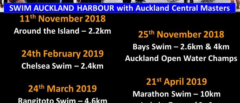 ACM Bays Harbour Swim
