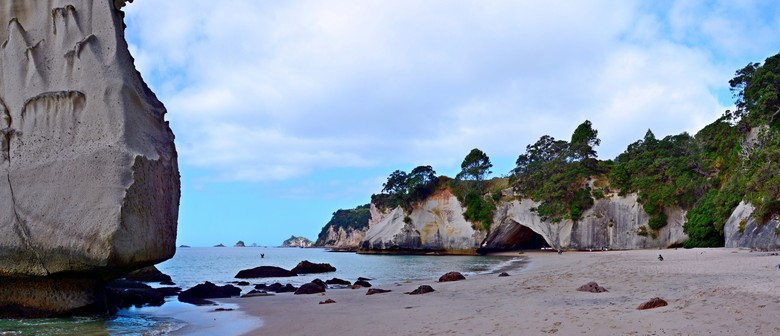 Cathedral Cove Walk And Weed Formental Health Awareness Week