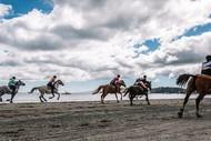 Image for event: Onetangi Beach Races
