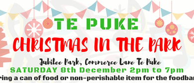 Te Puke Christmas In the Park