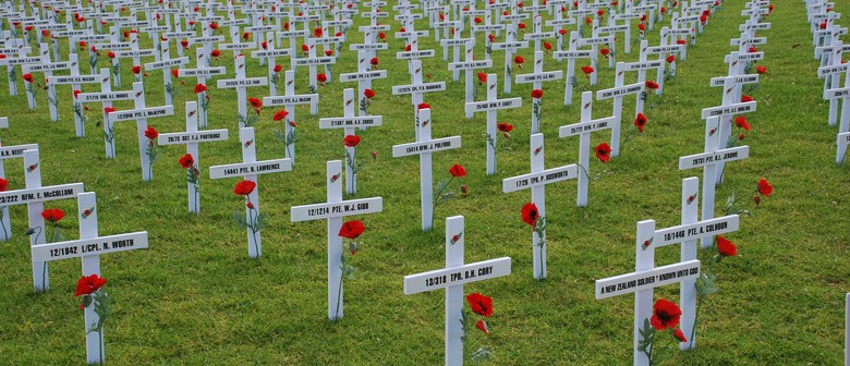 Field of Remembrance Cross Collection