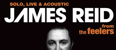 The Feelers - James Reid Solo/Acoustic