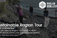 Image for event: Sustainable Raglan Tour