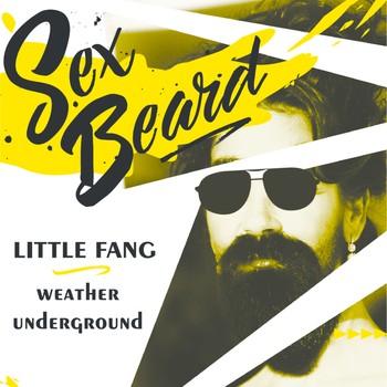 Sex Beard & Friends