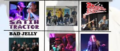 Moo'vember Blues Xtravaganza
