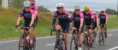 10 Day Road Cycle Tour of Wellington, Wairarapa & Kapiti