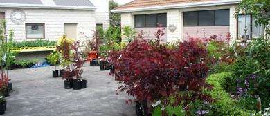 Garden No 5 Taranaki Fringe Garden Festival