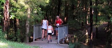 SummerNav - Auckland Orienteering Event 3
