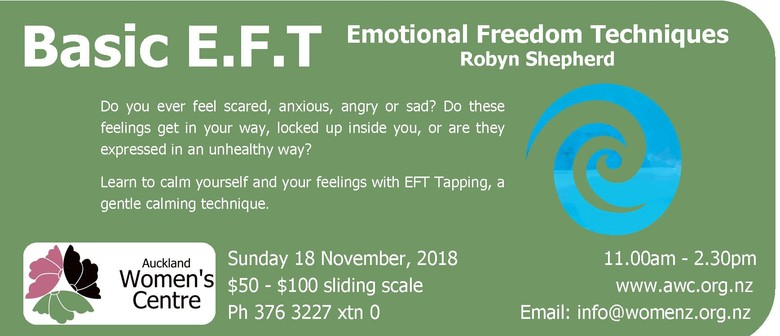 Basic EFT: Emotional Freedom Techniques