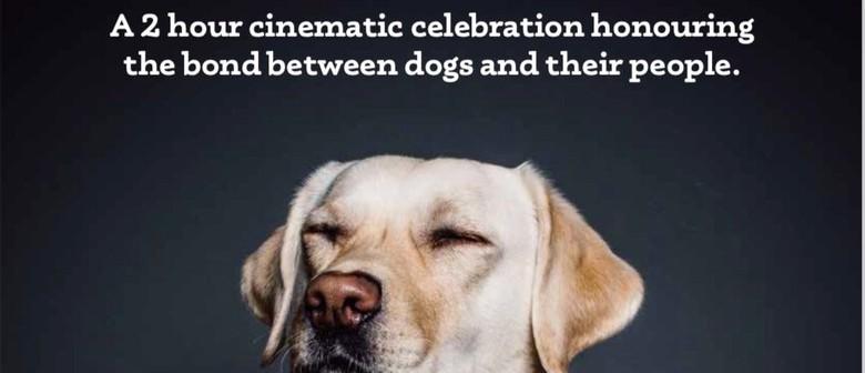 Top Dog Film Festival NZ Encore