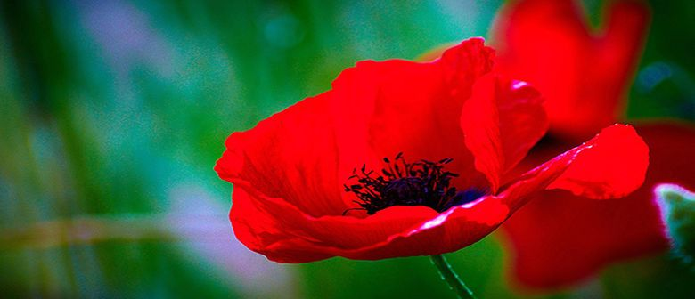 Featherston Armistice Day Centenary Service