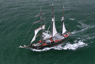 Napier Full Day Sail On Board Spirit of New Zealand