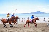 Image for event: Beach Polo