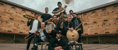 Hot Potato Band - Stitch Up Tour