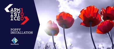 Armistice Day - Poppy Installation