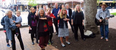 DCC Waiata Group
